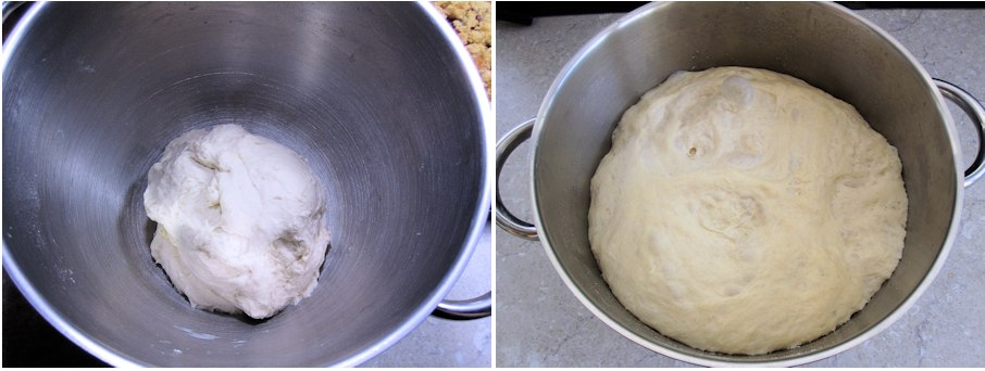 Bagel dough