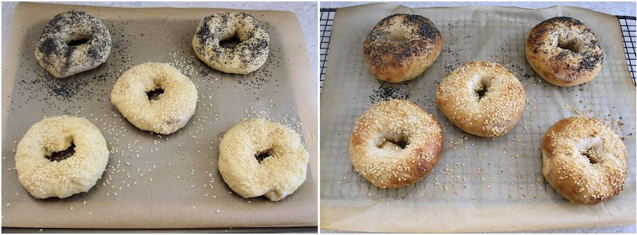 Poppy seed and sesame bagels