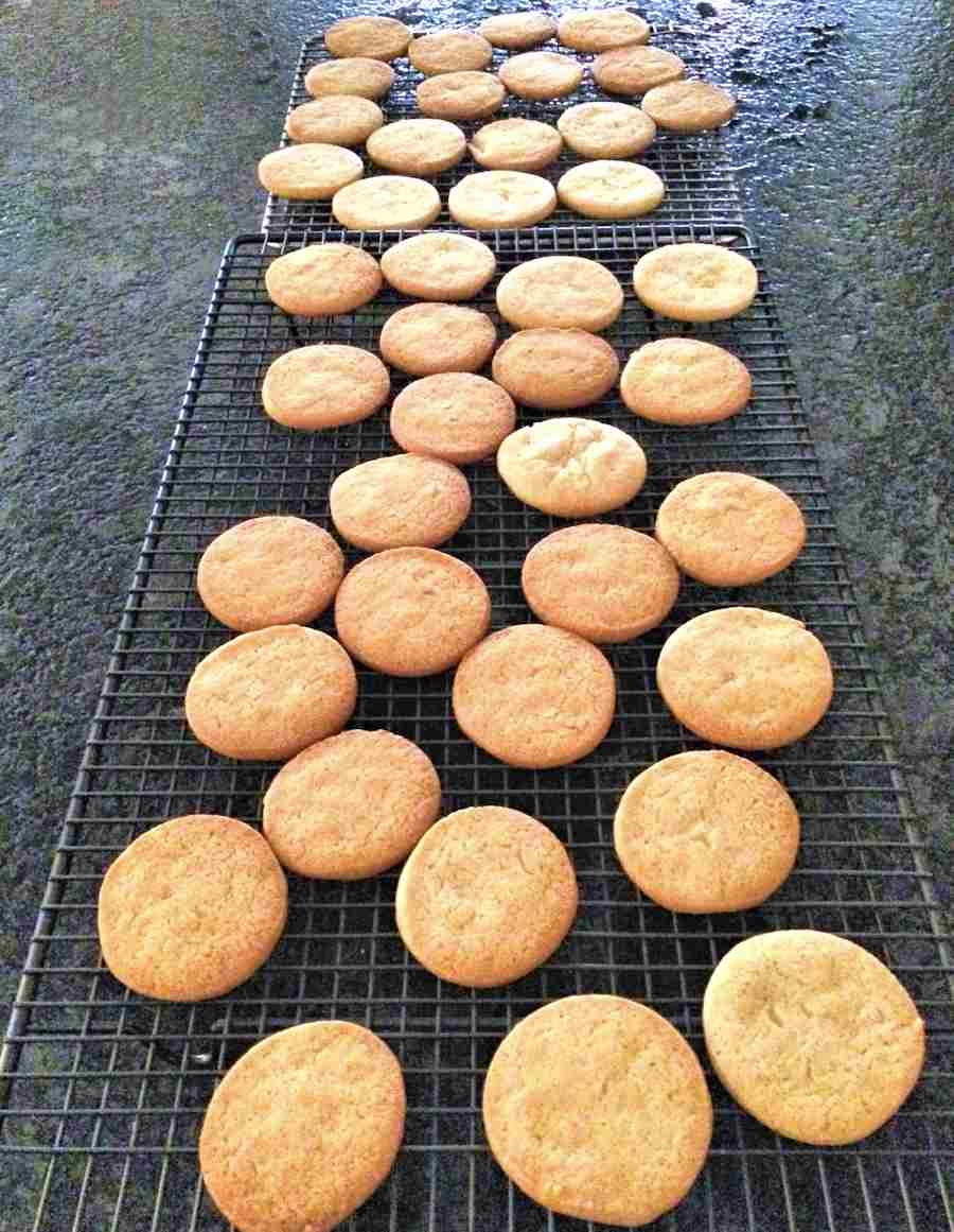 Crunchy Biscuits Recipe Cuisine Fiend