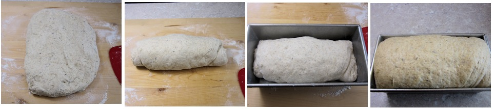 Shaping and proving deli loaf