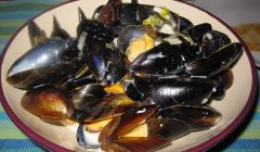 moules in creamy sauce