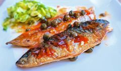 sticky mackerel