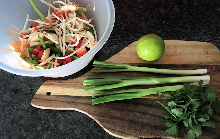 Scallions and veg for stir fry